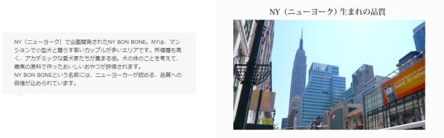 ニューヨーク新